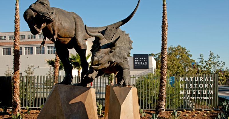 LA-tour-Natural-history museum